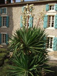 Chambre d'Hôtes Villefloure Domaine Saint Andrieu