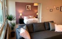 Appart Hotel Lille Appart Hotel La Vie en Rose - Appartement Centre Gares