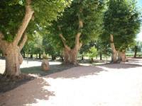 gite Le Castellet Domaine de La Pességuière