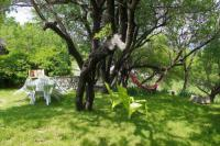gite Grignan Maison de caractère avec jardinet