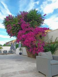 Residence-les-terrasses-du-Sud Toulon