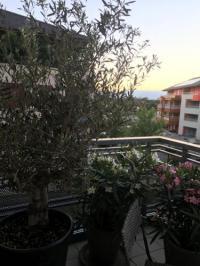 Appart Hotel Annemasse Appart Hotel Appartement avec balcon