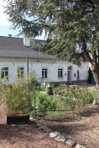 Gîte Gonnehem Gîte Cosy Cottage