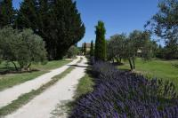gite Barbentane Vacances en Provence LaBimarde.