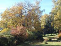 Chambre d'Hôtes Limoges les bois de saint auvent