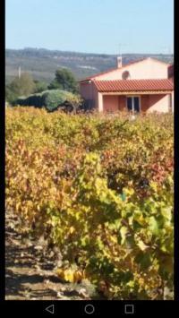 Chambre d'Hôtes Saint Cyr sur Mer Les Vignes BetB
