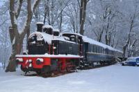 tourisme Étang sur Arroux Le Train Des Reves