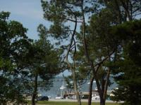 Appart Hotel Andernos les Bains Appart Hotel Appartement 2 chambres Bassin d'Arcachon front de mer, plage du Betey
