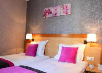 Hotel Fasthotel Paris Hotel du Chemin Vert