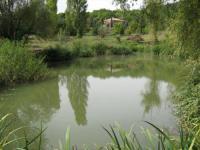 gite Saint Maurice de Cazevieille La Font de Rouve