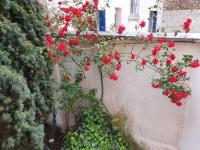 Chambre d'Hôtes Montreuil Le fleuri