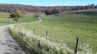 Terrain de Camping Champagne Ardenne Vallon Vert