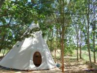 Terrain de Camping Alligny en Morvan Mini camping la Roche