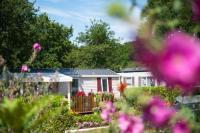Village Vacances Meschers sur Gironde Village Vacances Mobil-home 3 chambres camping 4