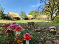 Résidence de Vacances Peyrelevade Chalet en campagne, Sauna et Piscine