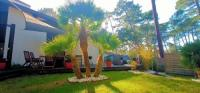gite Capbreton SEIGNOSSE BEACH Villa calm forest beach walk
