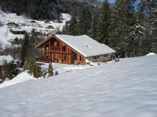 Sunny Chalet in Les Gets with Jacuzzi-Chalet-L-Etoile