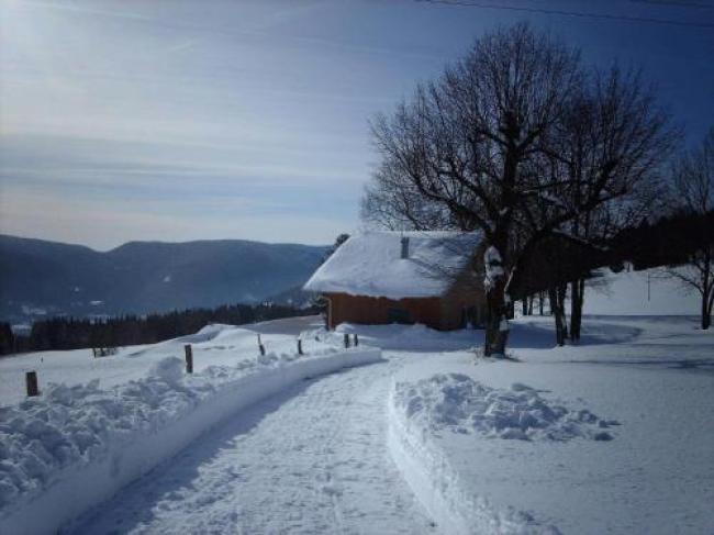 Beautiful Chalet Amidst Mountains in Saulxures-sur-Moselotte-Chalet-La-Bergerie