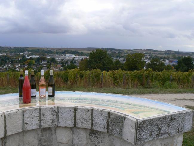 Vignoble de la Pente des Coutis-Credit-©CDT41-emasson