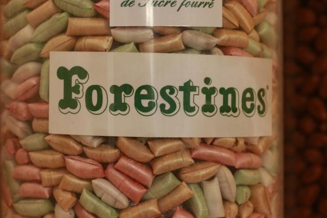 Maison des Forestines-Credit-Patrice-Reigner