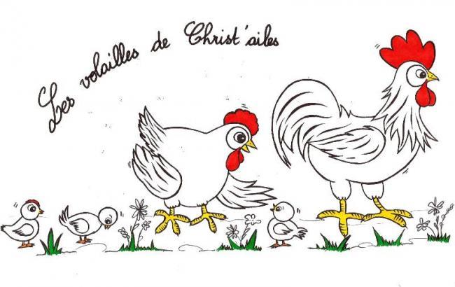 Les volailles de Christ'ailes-Credit-©-Les-volailles-de-Christ-Ailes