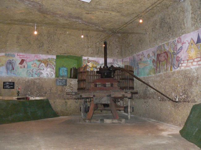 Conservatoire de la vigne et musée de la vigne et du vin-Credit-©CDT41-emasson