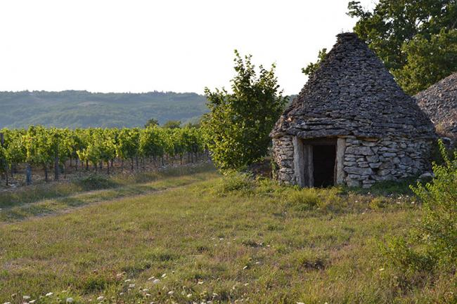 Domaine Campoy-Credit