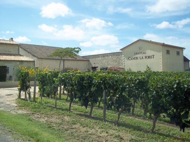 Château Canon La Forêt - Vignobles Mio et Fils-Credit-©-Office-de-tourisme