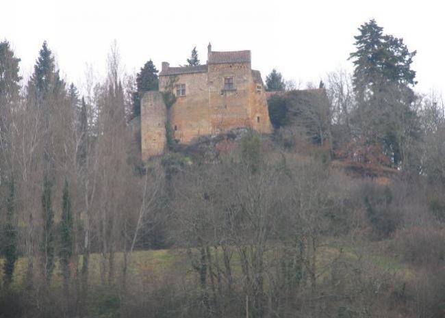 Journées Européennes du Patrimoine: Visite Guidée du Château du Théron.-Credit-Michel-Salaun