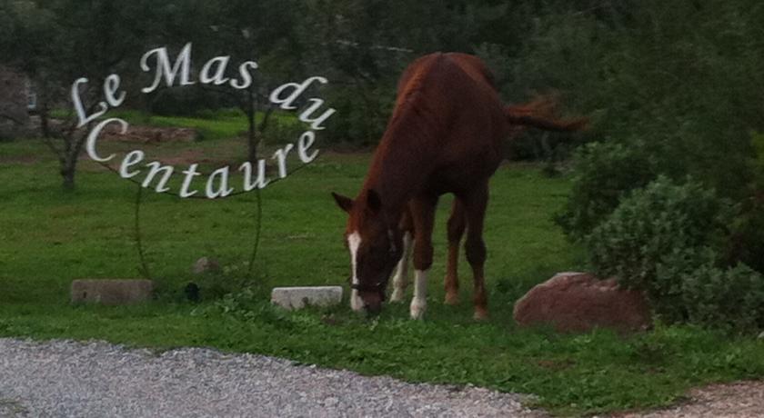 Le Mas du Centaure-Le-Mas-du-Centaure