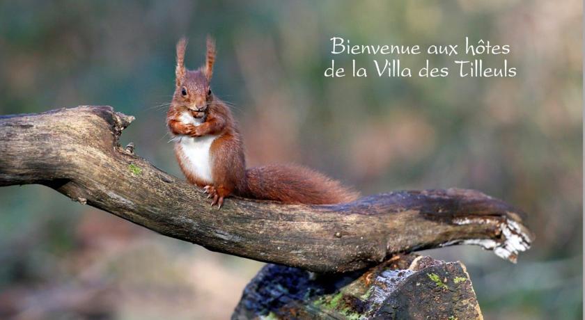 La Villa Des Tilleuls-La-Villa-Des-Tilleuls