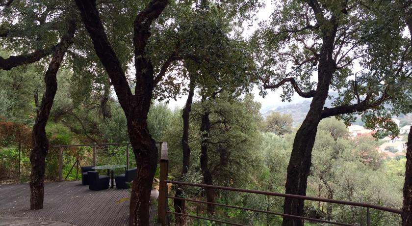 Appartement de charme terrasse solarium au calme-Appartement-de-charme-terrasse-solarium-au-calme