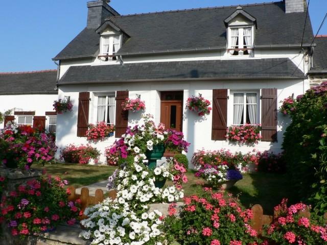 Gites les Hortensias-le-Grand-Hortensia