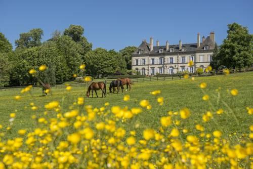 Château d'Ygrande - Châteaux et Hôtels Collection-Chateau-d-Ygrande-Chateaux-et-Hotels-Collection