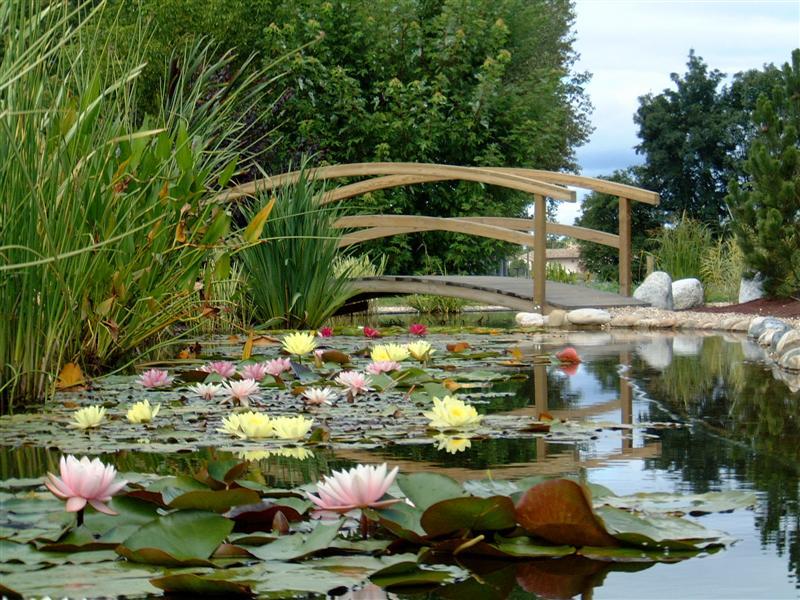 Les Jardins Aquatiques Et Son Musee-Le-parc-des-Jardins-Aquatiques