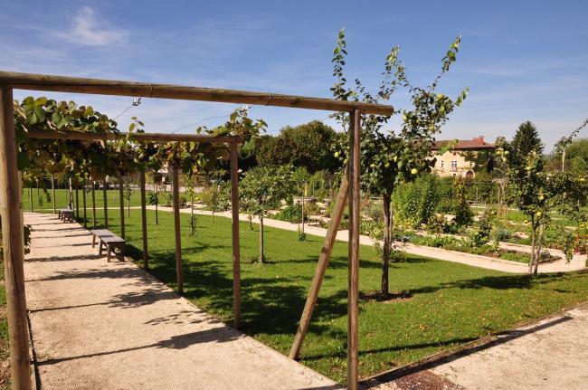 Le Jardin Des Carmes-treille-du-petit-verger-et-potager