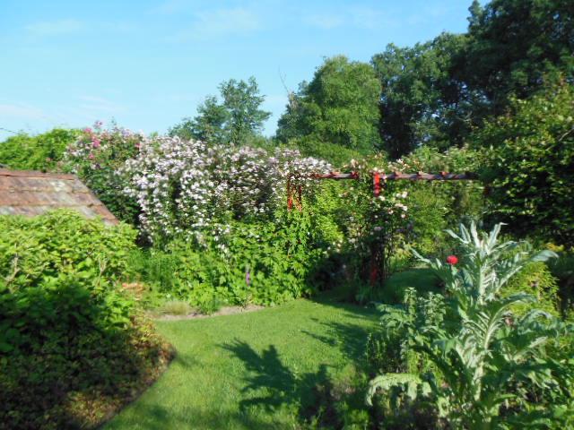 Au Jardin D'Eden-vue-jardin