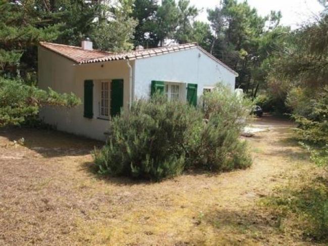 House Les pins-House-Les-pins