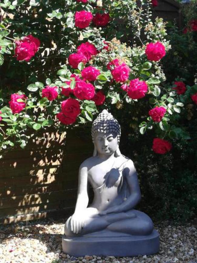 Chambre Zen de Beauval-Chambre-Zen-de-Beauval