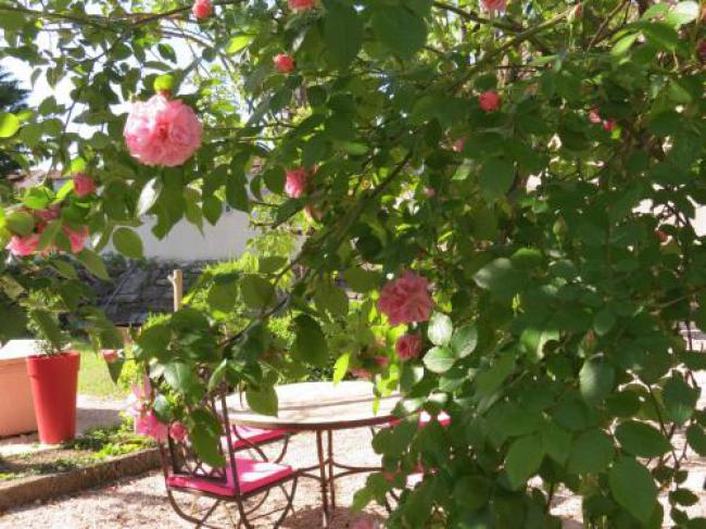 Le Jardin-Le-Jardin
