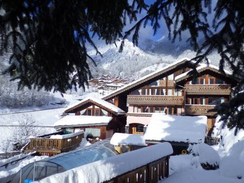 Résidence Les Edelweiss-Residence-Les-Edelweiss