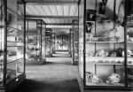 Musée Fragonard-Musee-Fragonard-mfragonard-3116-1249.jpg