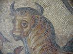 Musée Rolin-Musee-Rolin-autun-mosaic-neptune-2288-887.jpg