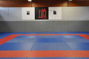 Dojos et Salles de Combat. Judo, Karaté, Escrime, Boxe Boisyvon